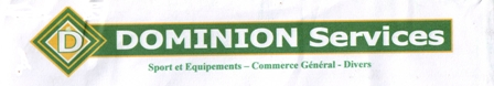 dominion services logo